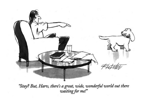 mischa-richter-stay-but-harv-there-s-a-great-wide-wonderful-world-out-there-waiting-new-yorker-cartoon