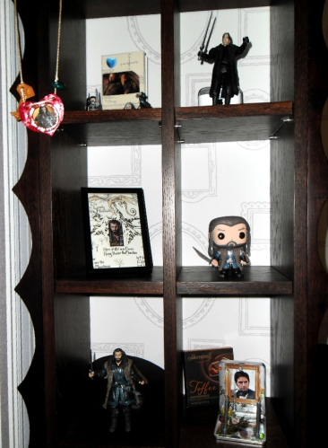 Armitage admiration shelves 1